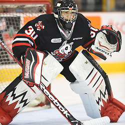 Stephen Dhillon of the Niagara IceDogs. Photo by Aaron Bell/OHL Images